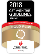 2018 get with the guidelines stroke award